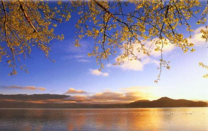 丽江、泸沽湖《热带雨林》西双版纳高品质纯玩七日游