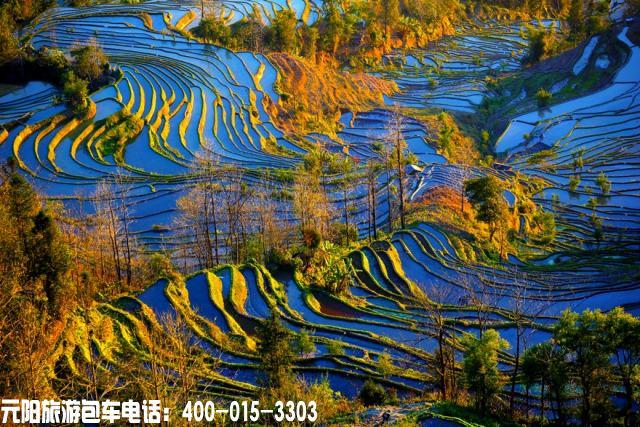元阳梯田最佳旅游摄影时间和最佳季节拍摄点|云南元阳梯田旅游攻略