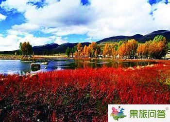 昆明普洱、西双版纳、大理丽江、香格里拉泸沽湖 11日游(全线游)
