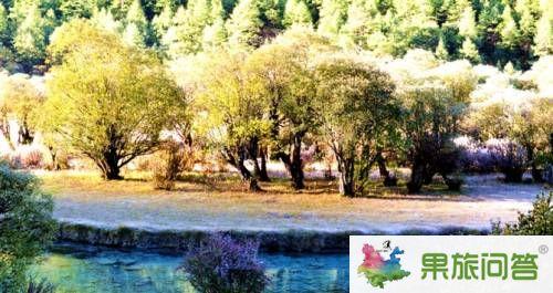 香格里拉二日游行程【丽江到香格里拉二日游】