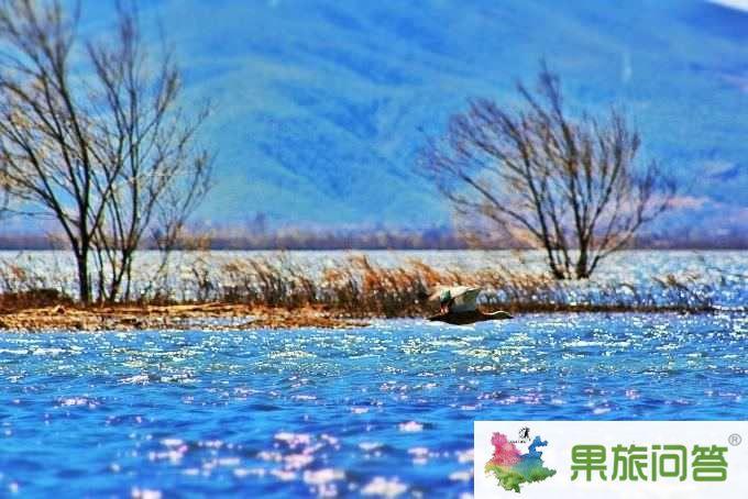 翡翠旅程:休闲游—昆明、大理、丽江+丽江自由行