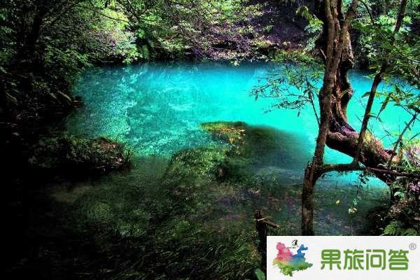 """<b>昆明、大理、丽江、西双版纳""""7晚8天生态休闲之旅</b>"""